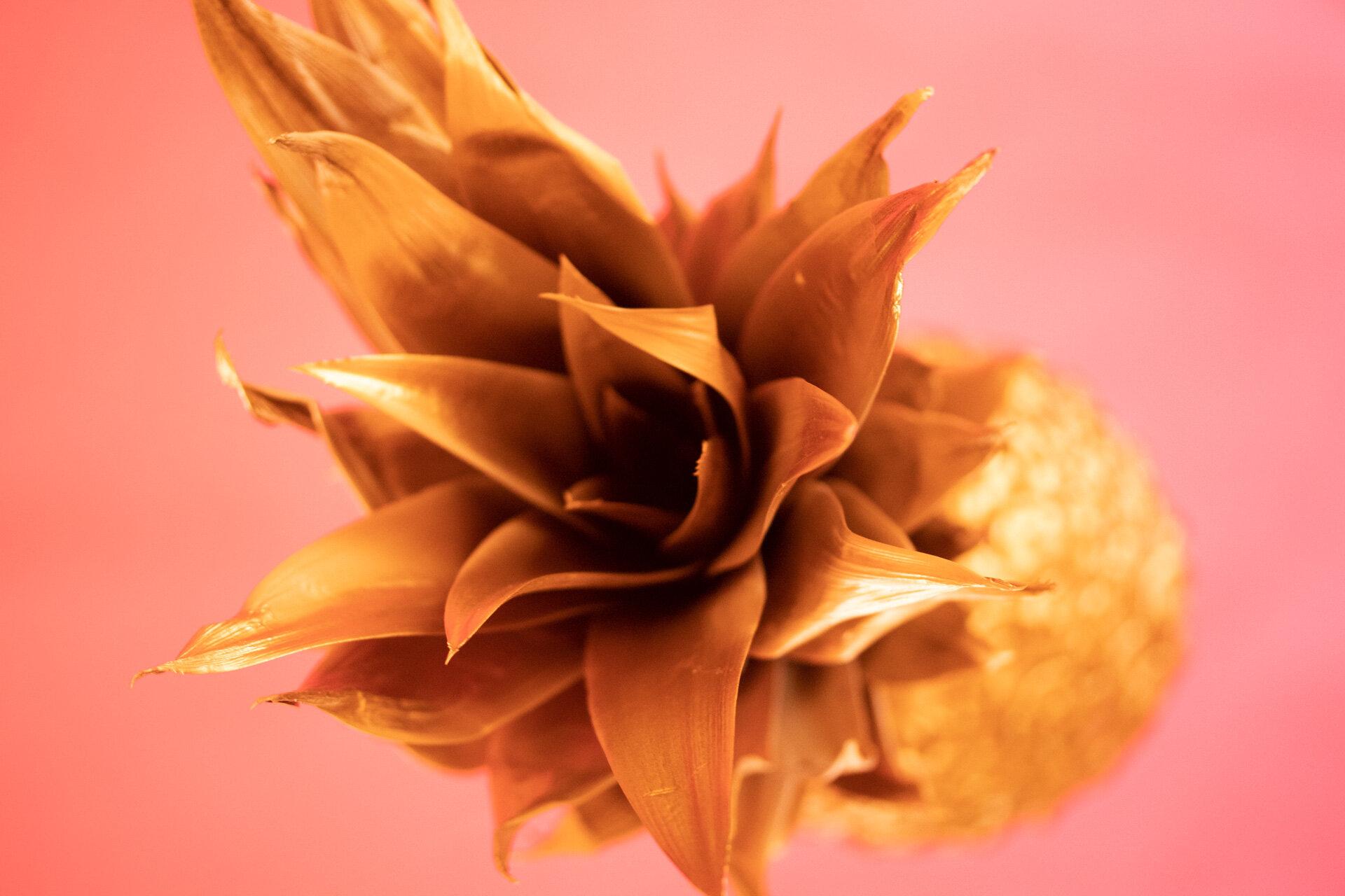 BPP 11 - Golden Pineapple - IG-1.jpg