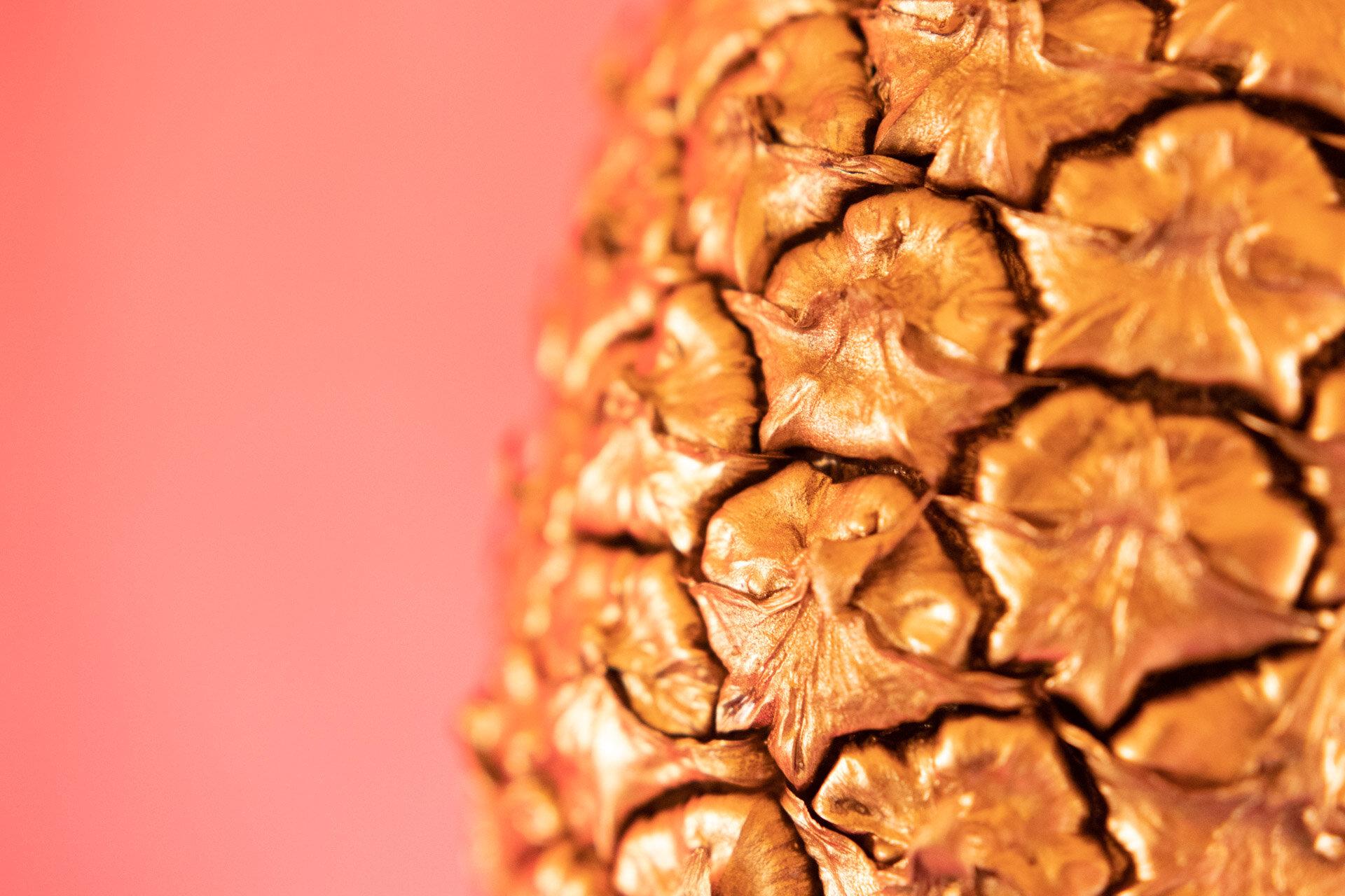 BPP 11 - Golden Pineapple - IG-6.jpg