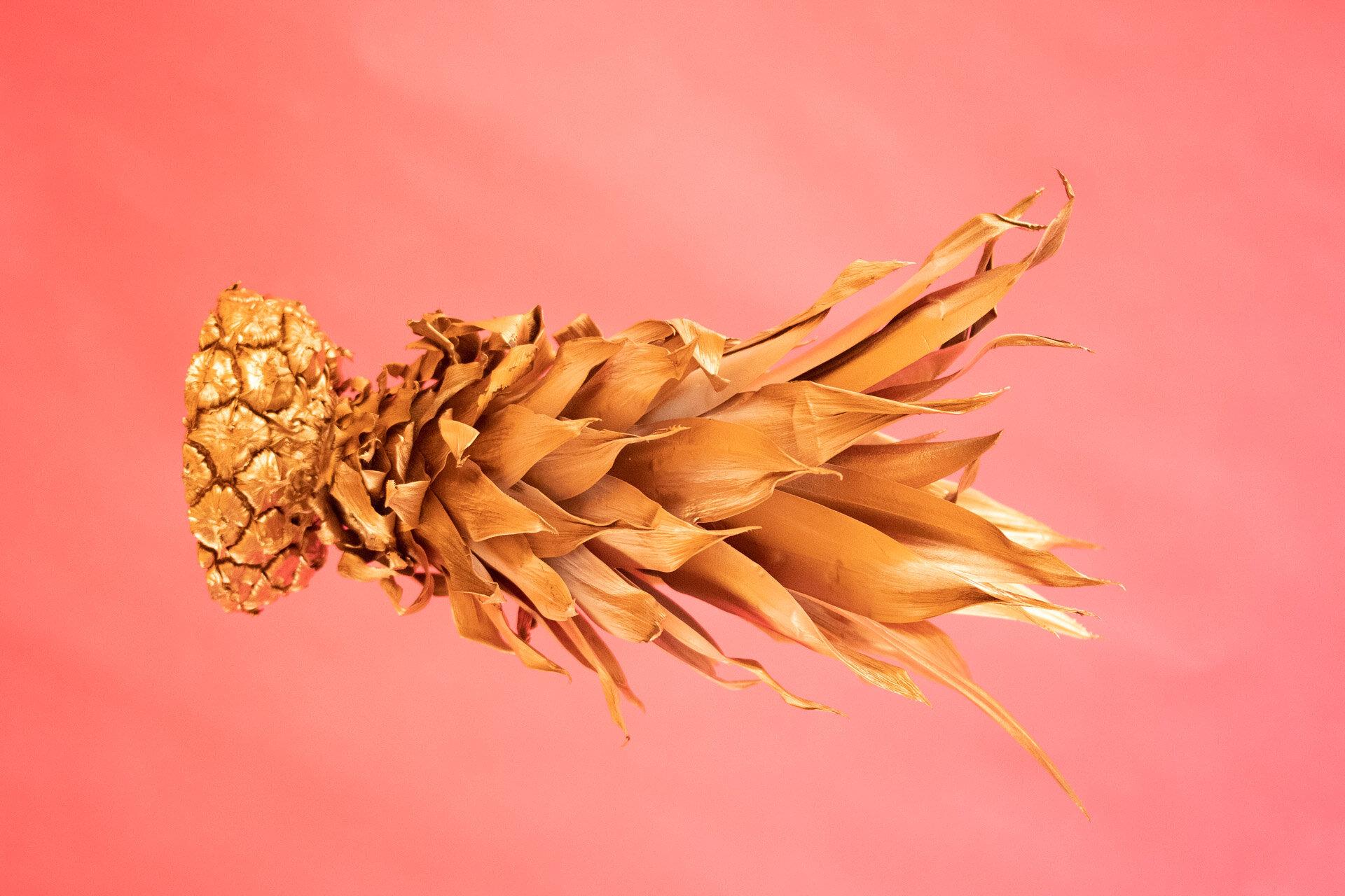 BPP 11 - Golden Pineapple - IG-9.jpg