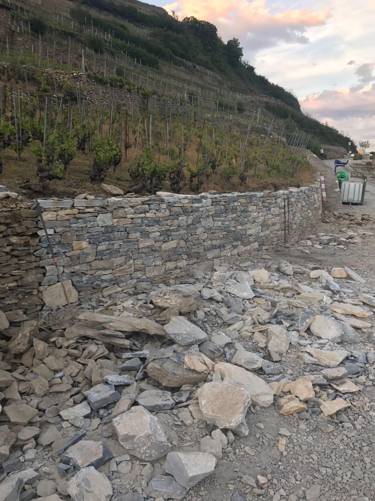 Réfection de mur de vignes