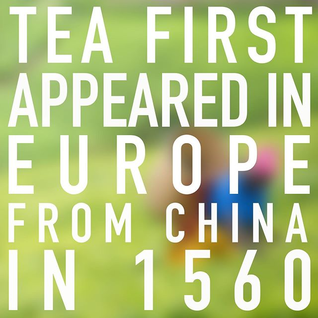 Tea has been brewing non-stop in Europe for over 450 years. It took a determined couple of Londoners a little less than that to perfect this Country's leading chilled version.  Find us in store at @tesco, @Sainsburys, WHSmith and @boots or online at @amazon today!  #LondonOnTheGo #harrybromptons #icetea #peach #lemon #drink #healthy #lowcalorie #lowsugar #peachicetea #lemonicetea #summerdrink #beverage #mealdeal #foodie #crossfit #diet #fitness #autumn #keto #peach #fruity #lime #tesco