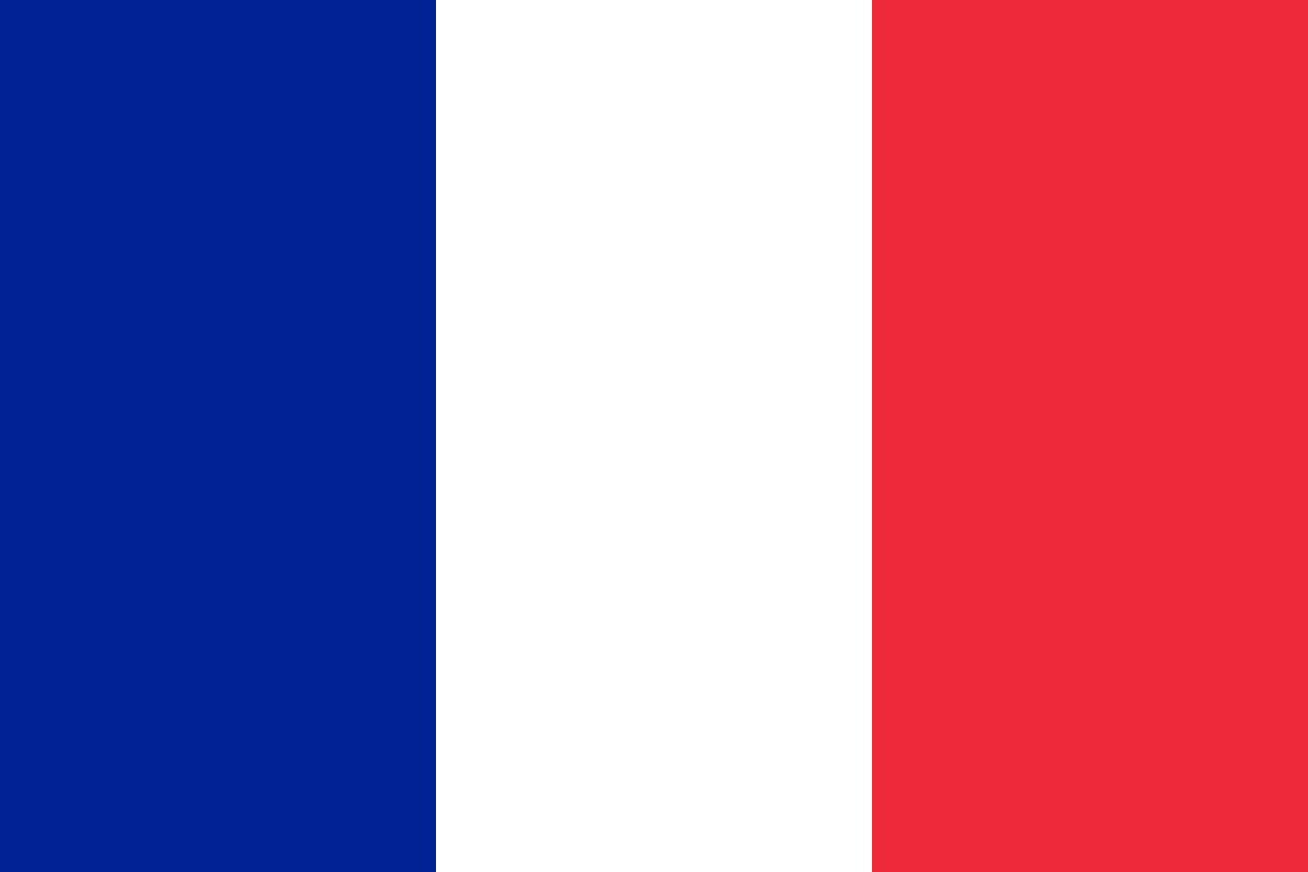 french-flag-large.jpg