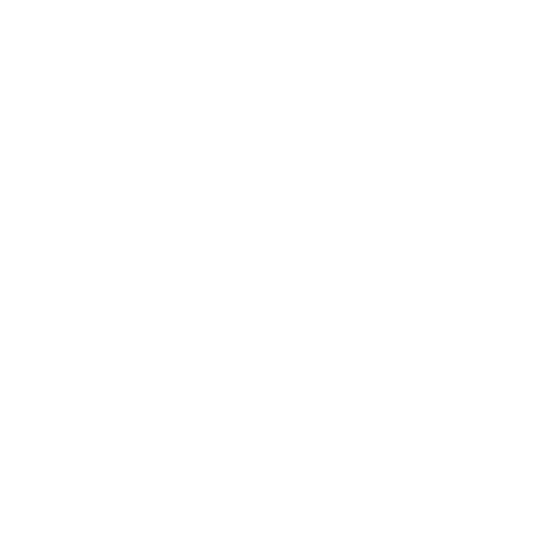 European Union Outlined with White.png