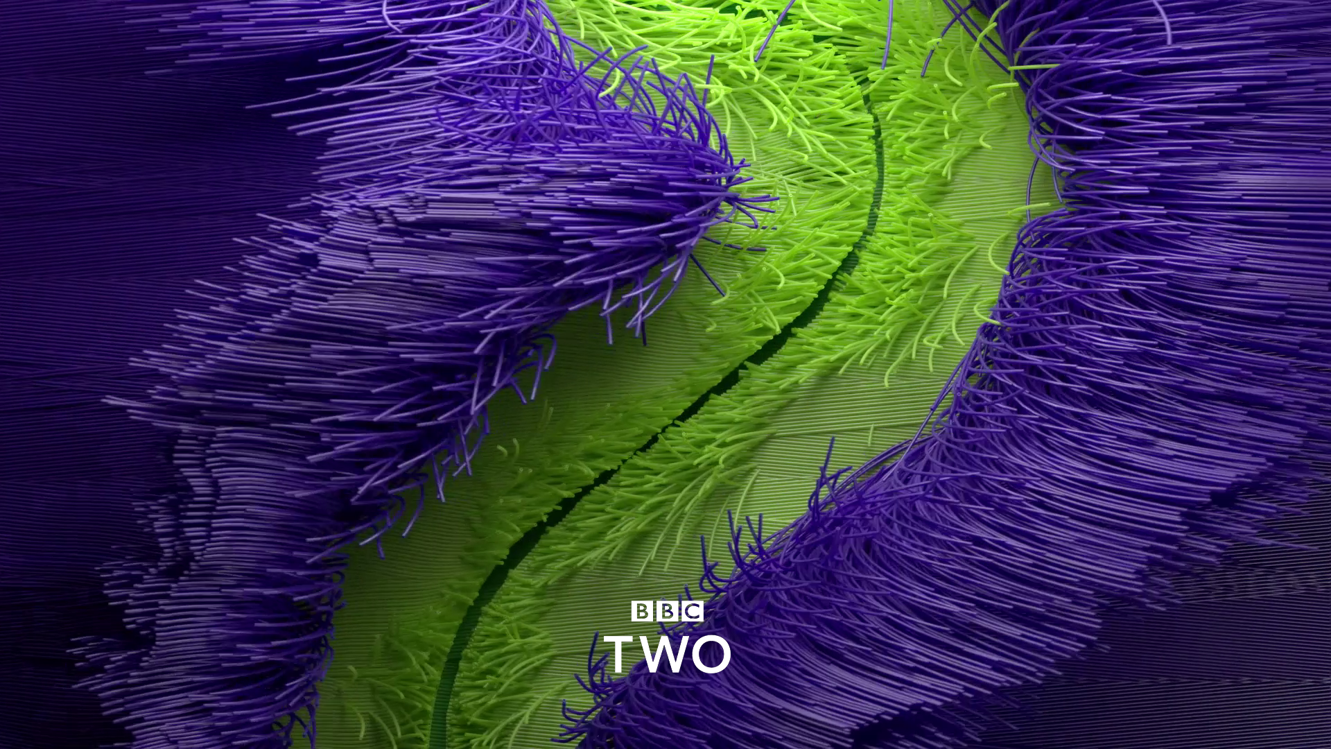 BBC2 04.png