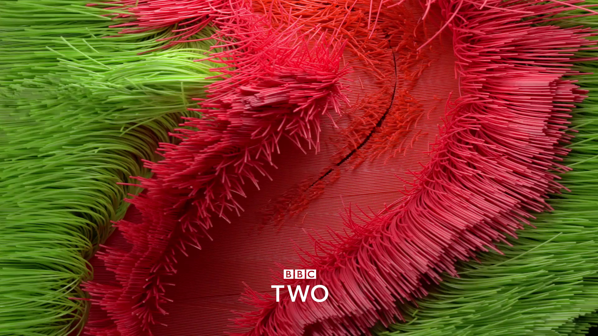 BBC2 01.png