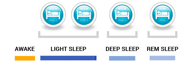 The four stages of sleep.  Picture from blog.health.nokia.com