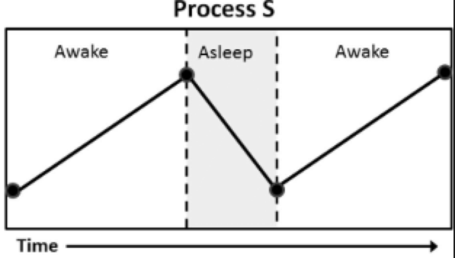 Graph representing Process S.  Picture from researchgate.net
