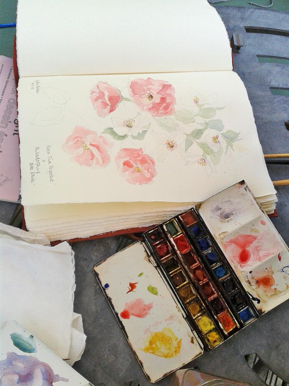 Pink-Harrison-Artist-Watercolour.jpg