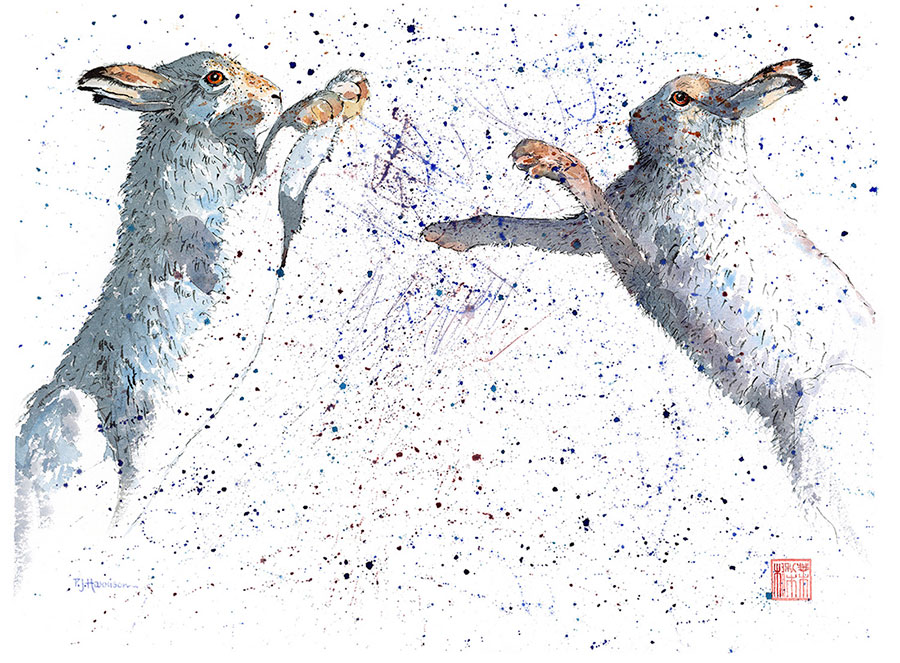 "BOXING HARES* watercolour 32"" x 39"" (framed)"