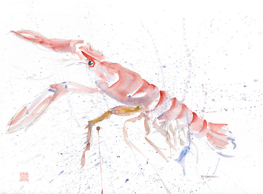 "LANGOUSTINE* watercolour 23"" x 30"" sold"