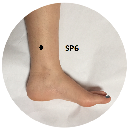 Spleen 6 acupuncture and acupressure point location and uses