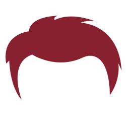 hair_2.png