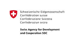 SDC Partner.png