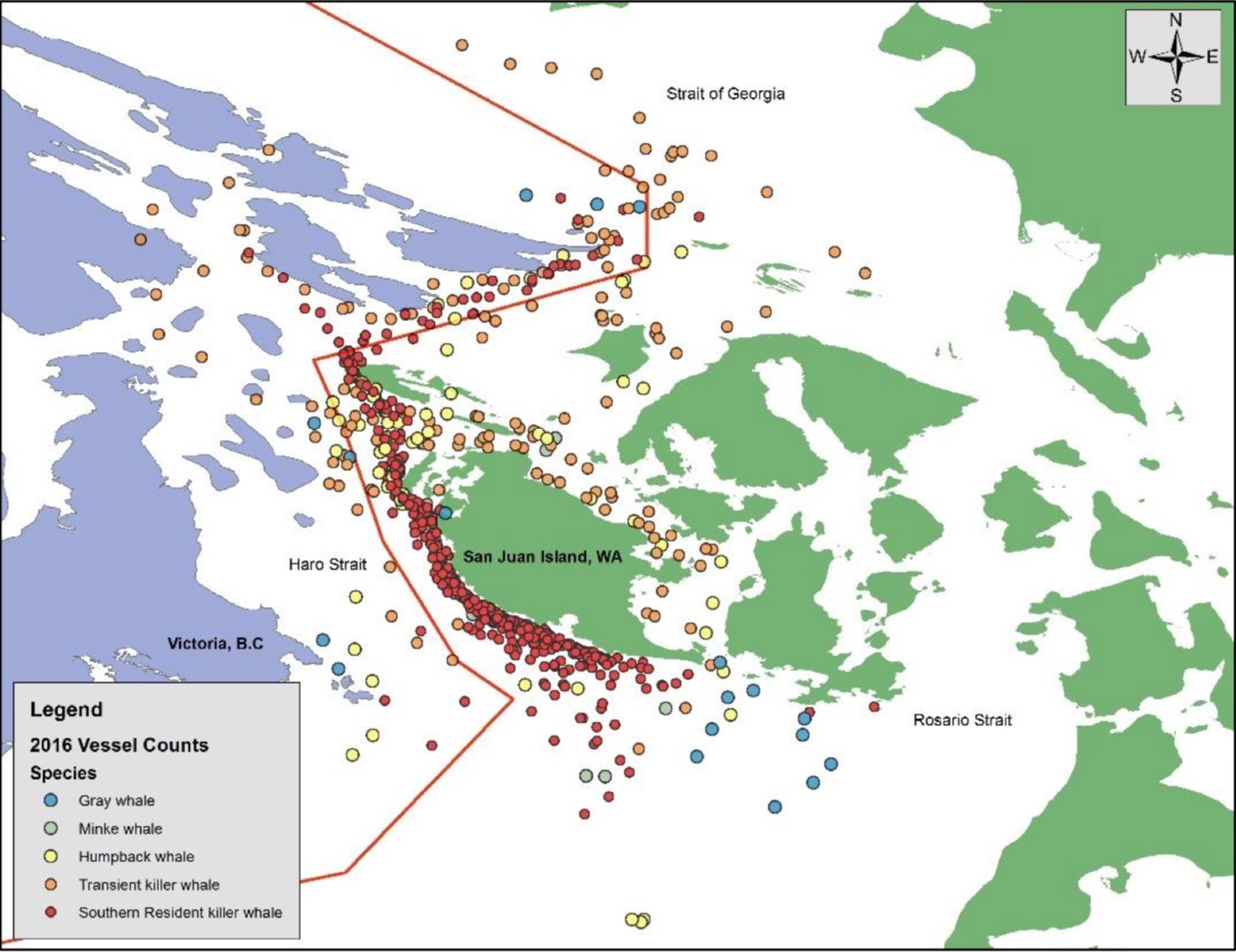 Red dots are Southern Resident killer whales in their core critical feeding habitat off the west side of San Juan Island. Photo credit: Soundwatch Boater Education Study, 2016.
