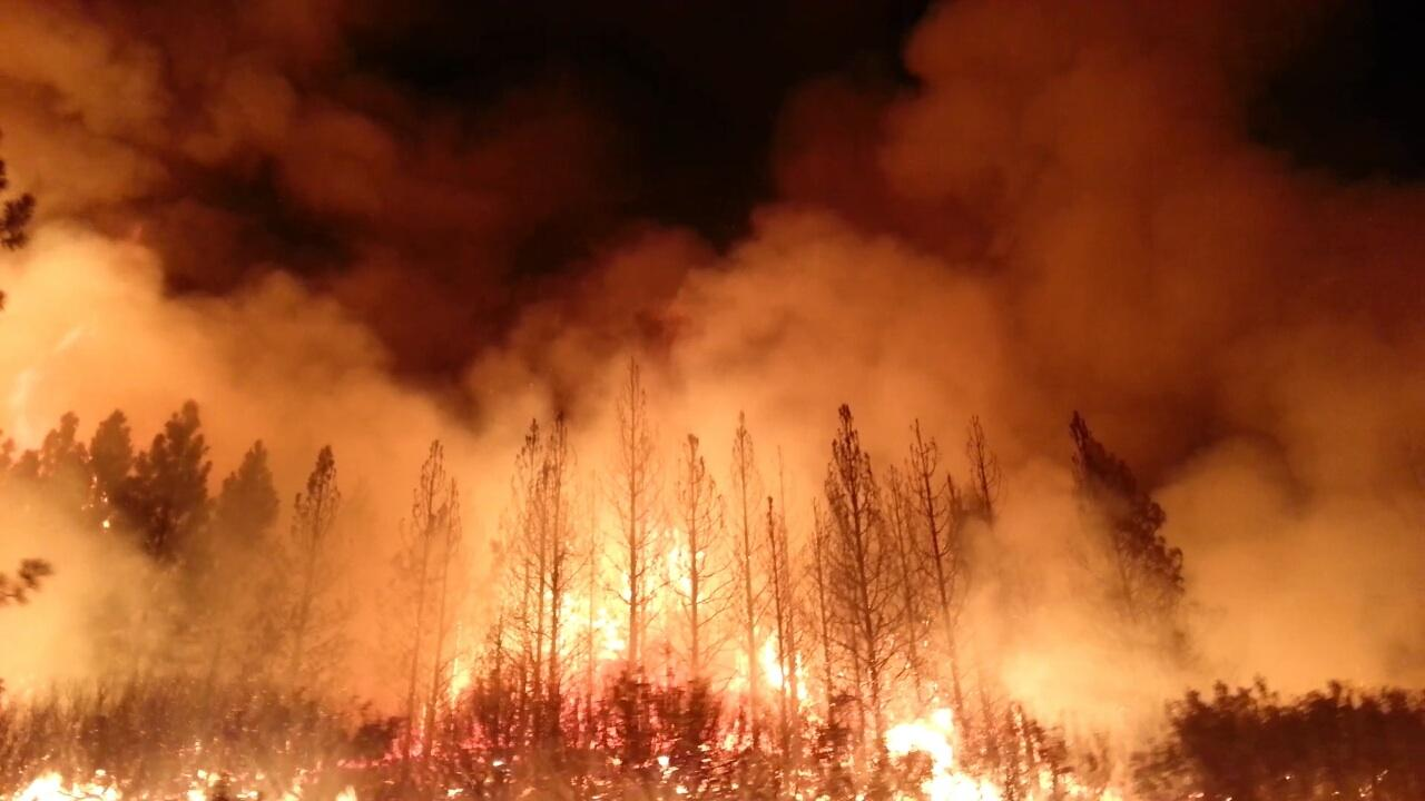 Climate Change and Wildfires - How Climate Change is increasing Wildfires