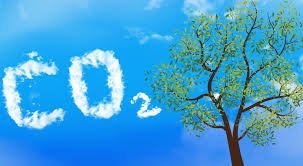 6 Ways to Remove Carbon Pollution from the Sky - 6 Ways to Remove Carbon Pollution from the Sky