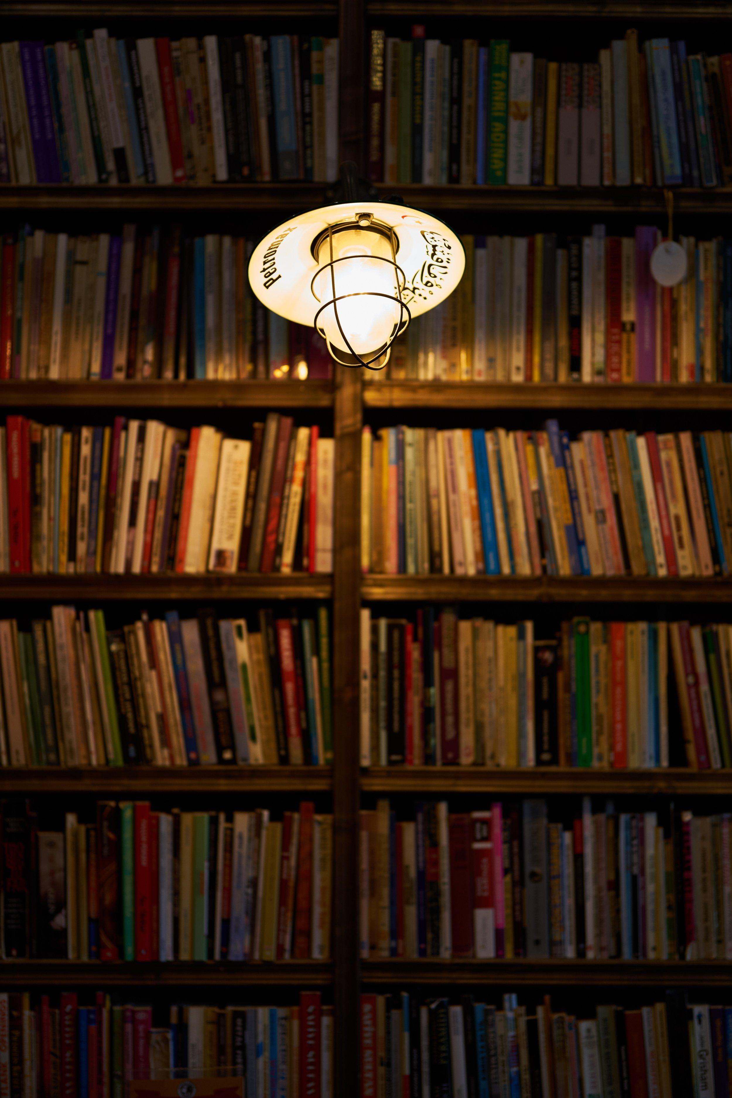 books-bookshelves-bookstore-2767814.jpg