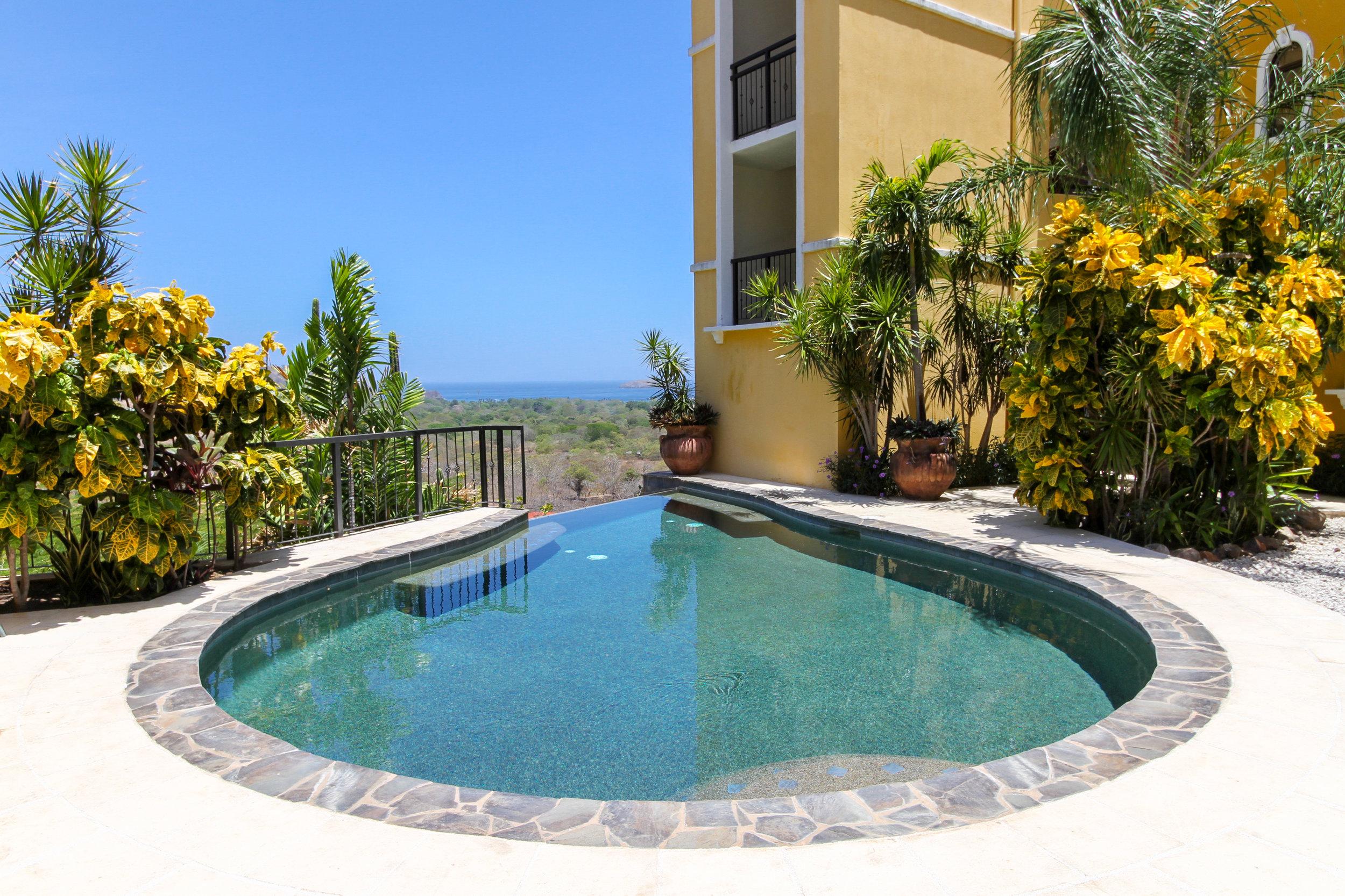 Main Pool 2.jpg