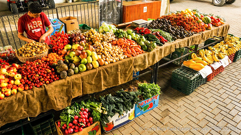 dominical-organic-farmers-market-3-of-13.jpg