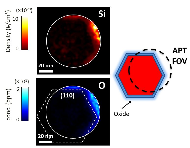 Mapping Si dopants in InGaAs nanowires using Atom Probe Tomography