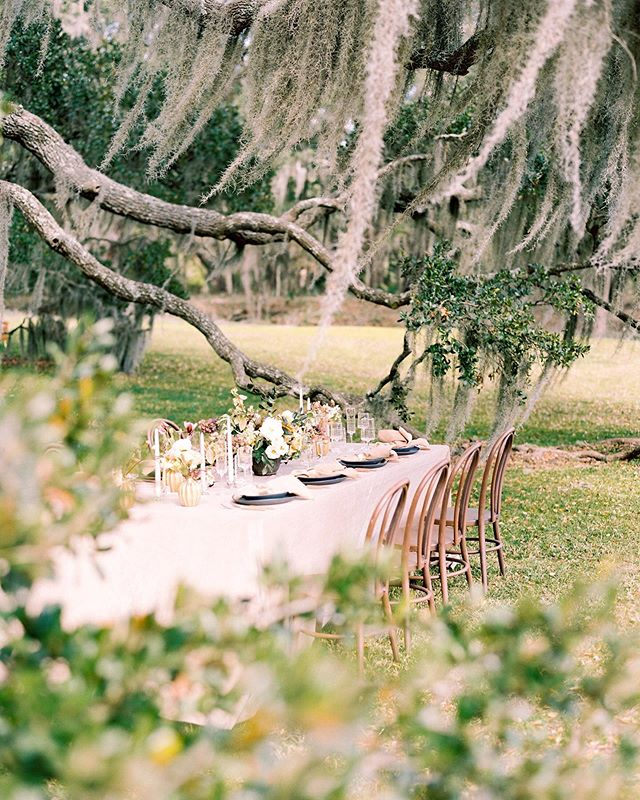 We interrupt this Monday to give you a SNEAK PEEK! ⠀ +⠀ Can't wait to show you more from our @kiawahriverchs shoot that will be featured on @magnoliarouge in September! ⠀ 📸: @sansaaraphotography ⠀ .⠀ .⠀ .⠀ .⠀ .⠀