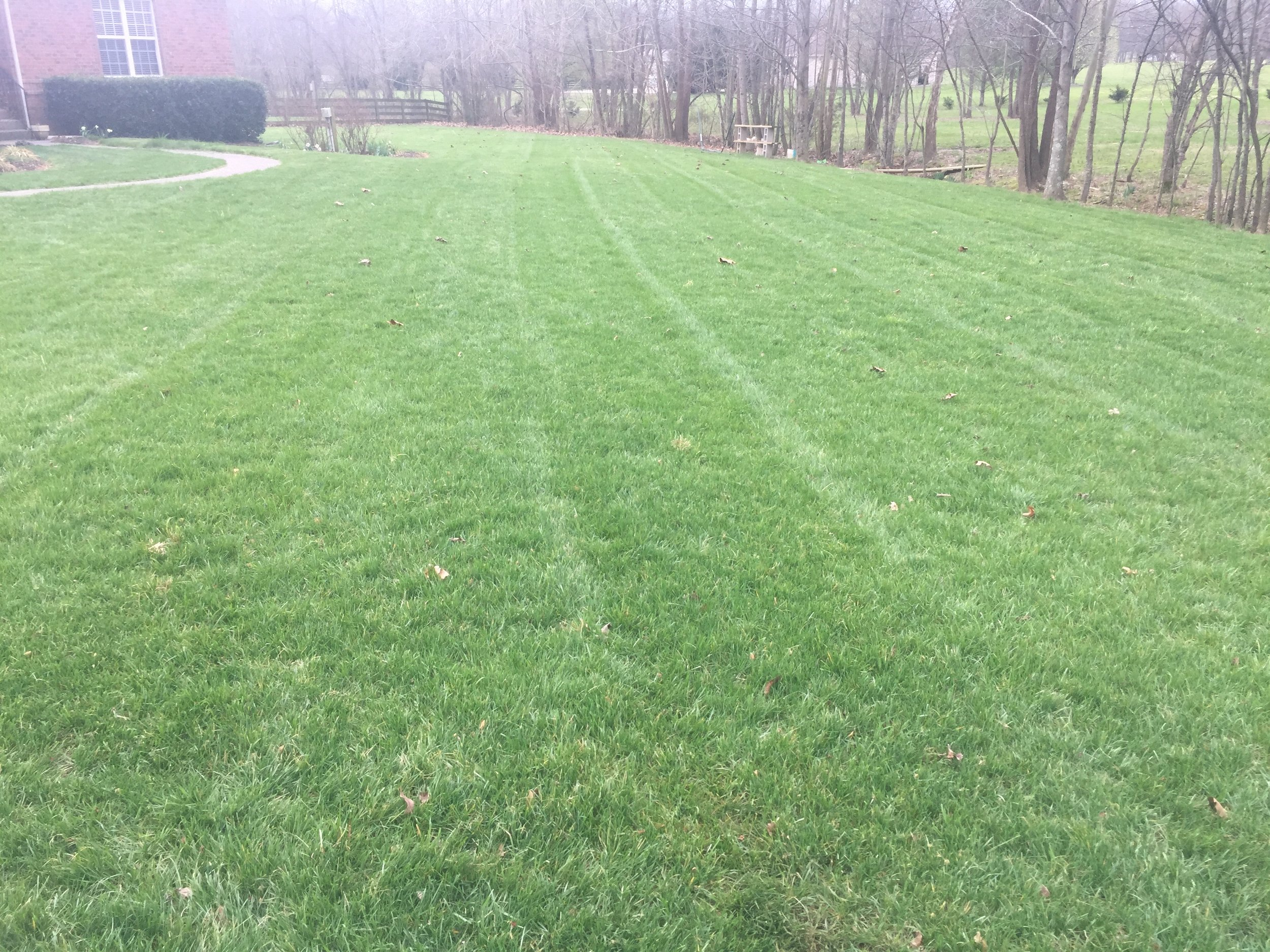 Treatment 1 - Pre-emergent, Fertilizer, RGS,  Weed Control (Feb - Mid March) Fertilizer and pre-emergent applied to continue feeding the lawn and preventing crabgrass through the summer.  RGS is a root growth stimulate and helps build healthy soil.  Also any weeds will be sprayed with herbicides.