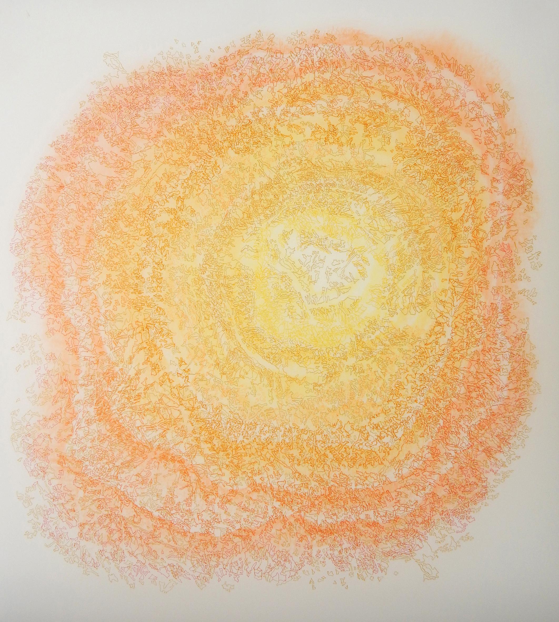 "Sycamore,  2016  Duralar, colored pencil, marker. 45"" x 40"""