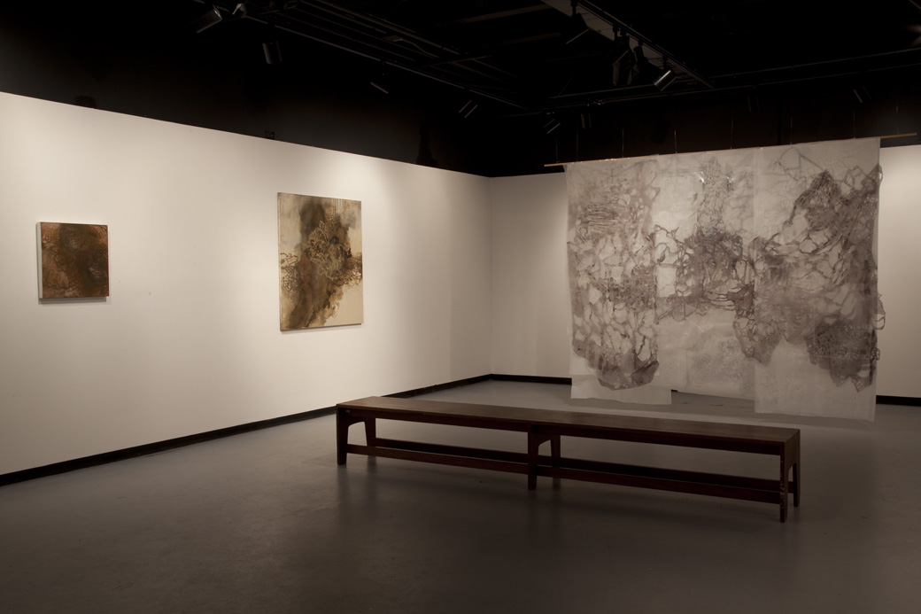 Installation View, Cosmic Lace