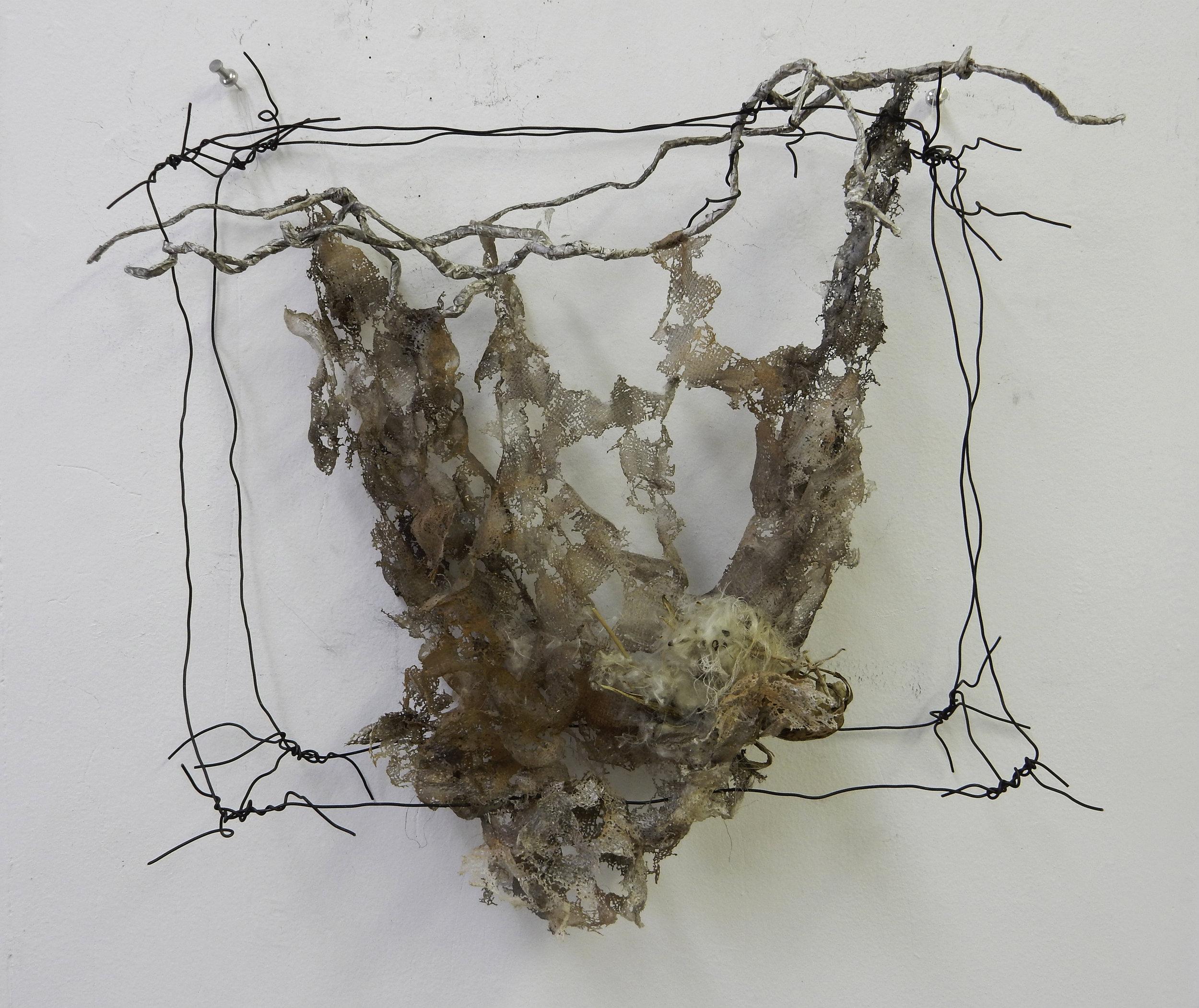 "Untitled  Pellon, wire, tape, paint, milkweed. 13"" x 15"" x 5"""