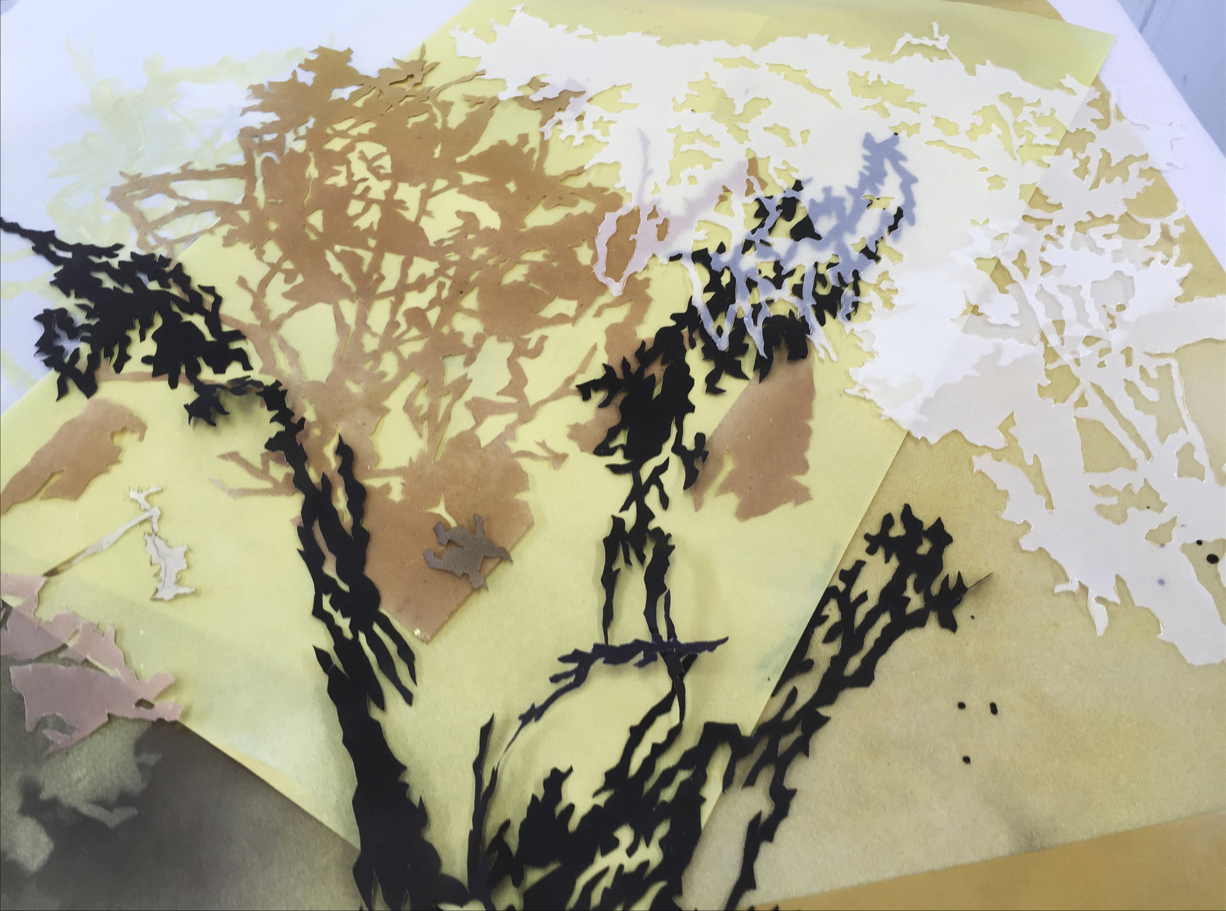 Process, Leaf Collage 1