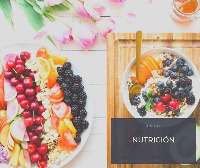 """Nuestra alimentación es fundamental en la vida diaria. Nosotros te traemos un módulo de nutrición en """"Momentos Creativos"""" con la intención de que te cuides. #nutrición #alimentación #comida #saludable #healthylife #healthyfood #food #yummi #morefoodplease #cursos #talleres #nutricionista #nutriologa #followforfollowback #followers #nutrition #aprendeacomer #registrate #enterate #amate #bienestarbien"""