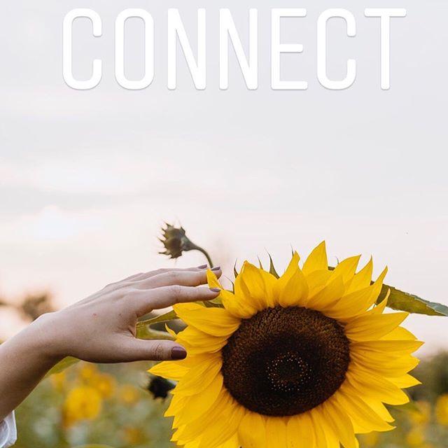 Conmect #emotional #emotionalhealing #emotionalconnection #emotionalhealth #emotionalwellbeing #integralconnection