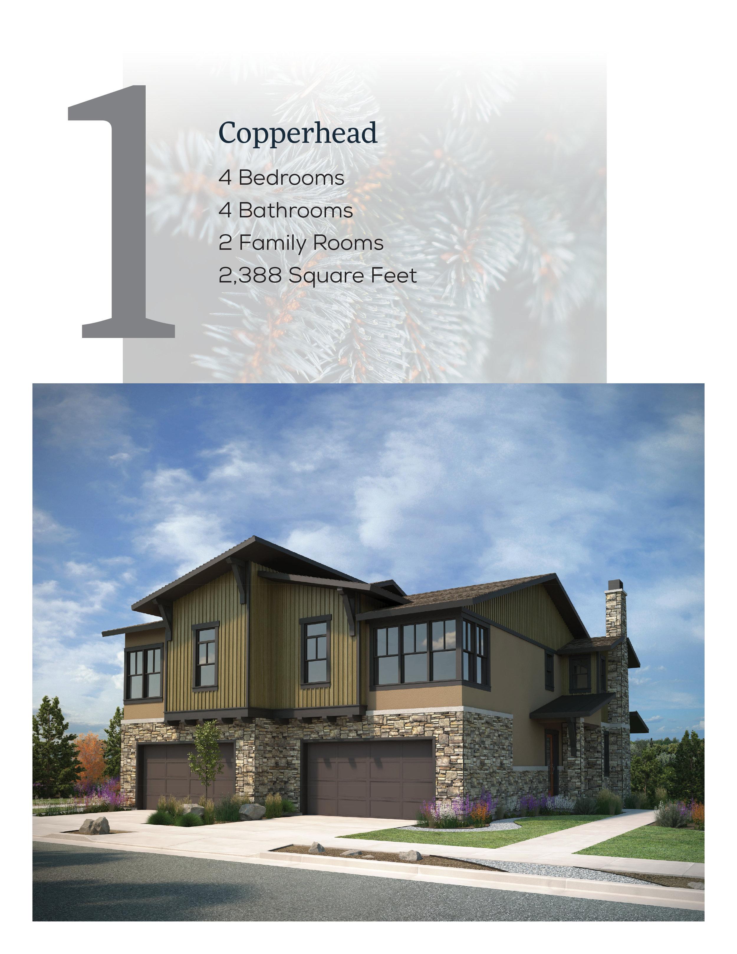 DWR Copperhead Unbranded .jpg