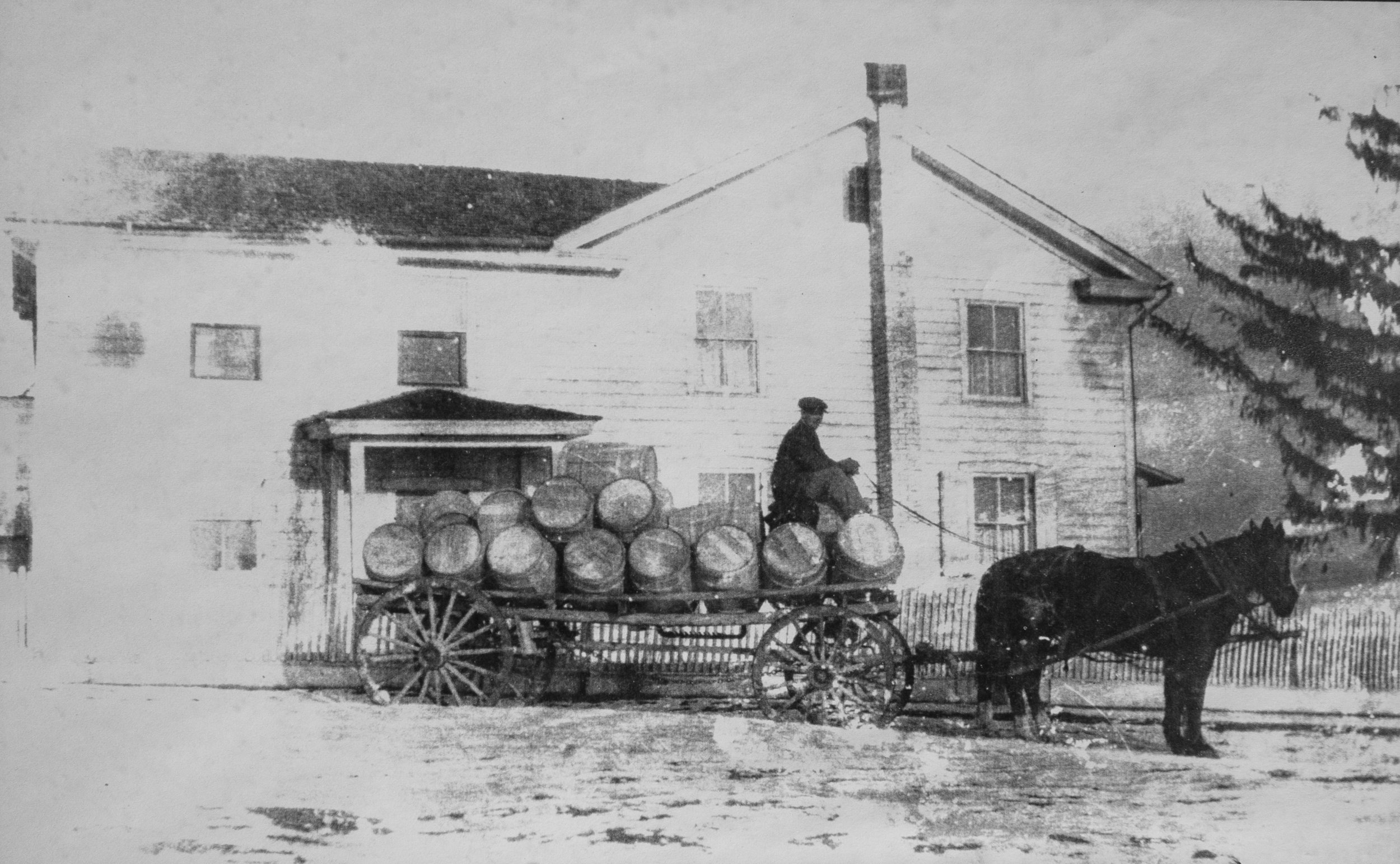 D.H. taking barrels of apples to the railroad.