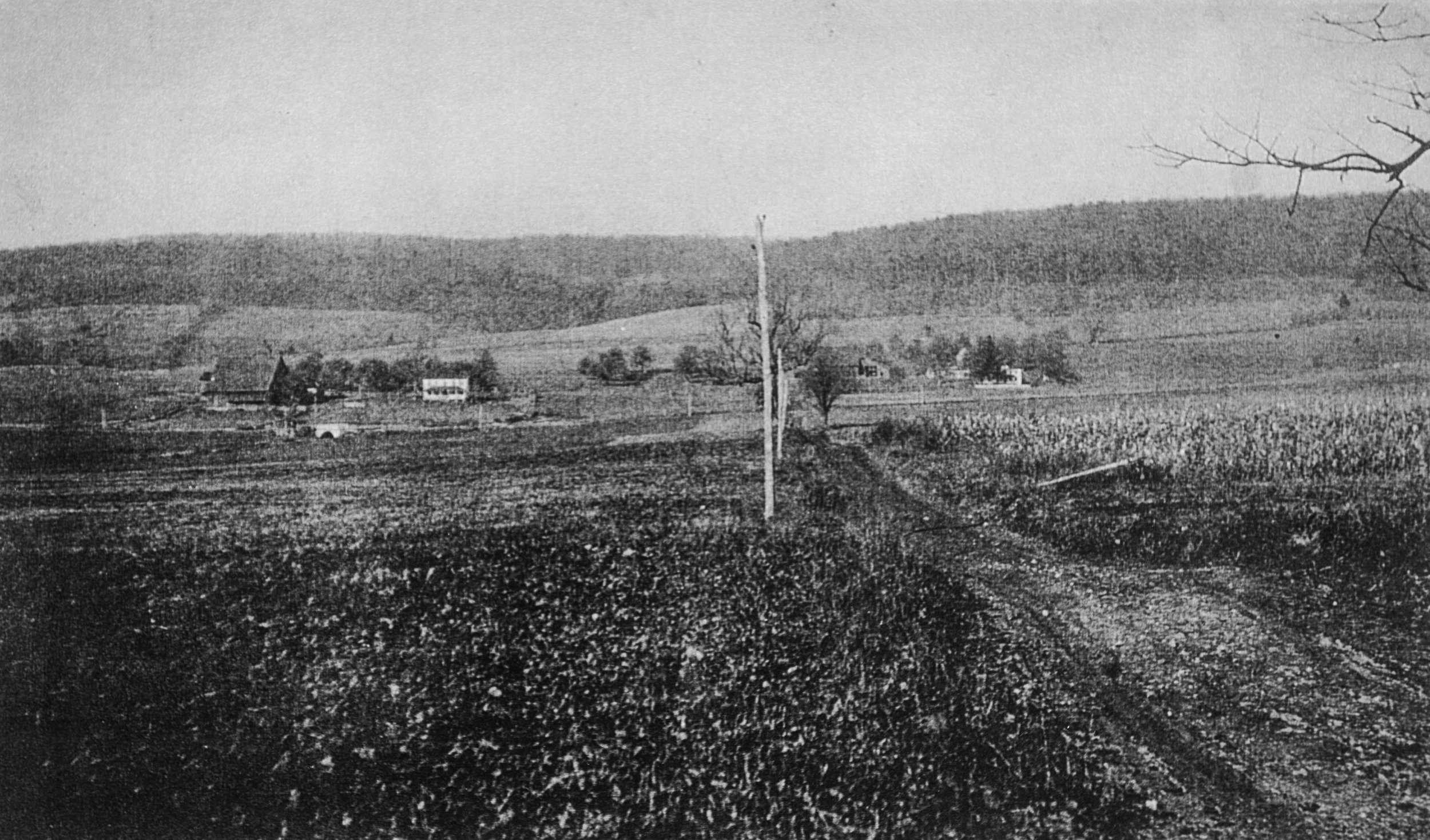 View from Smith Rd towards 550 in 1915.