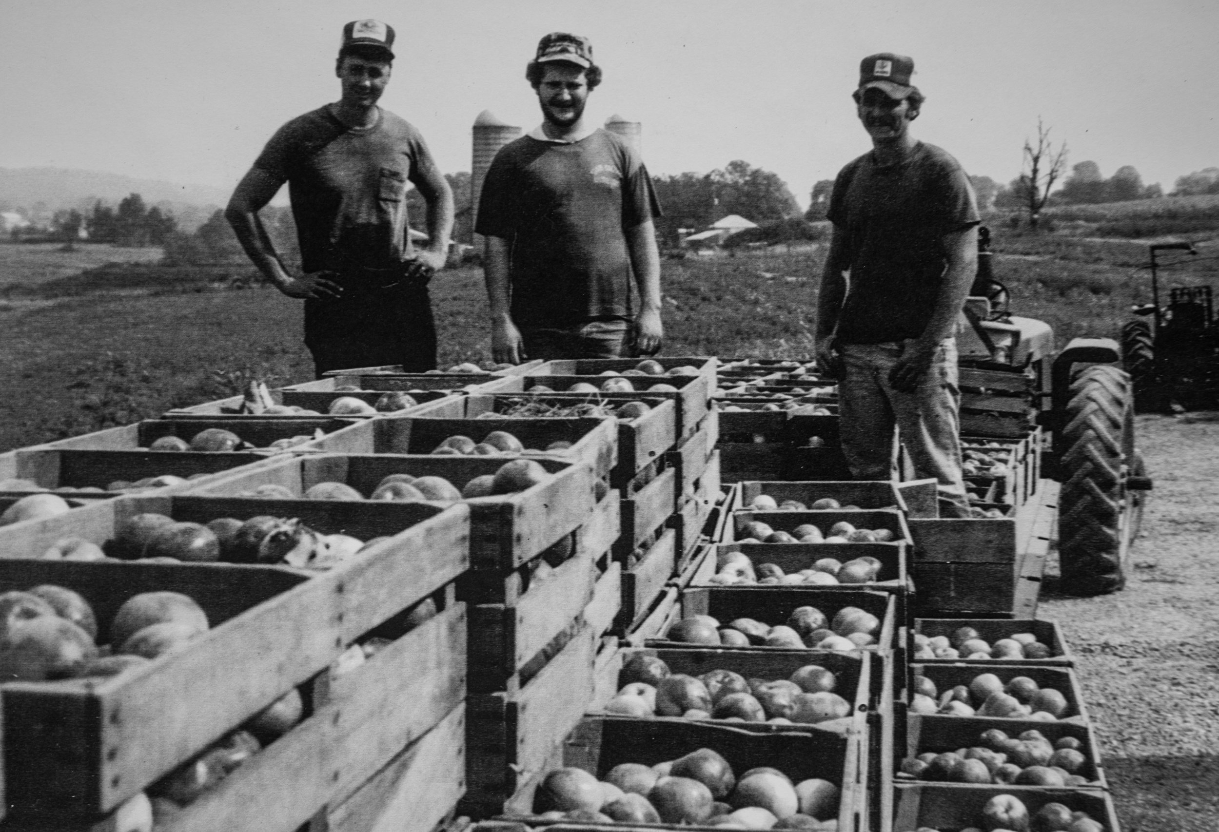 Brooks Way and his brother in law Rick DeArmitt bring in apples they picked in 1982.