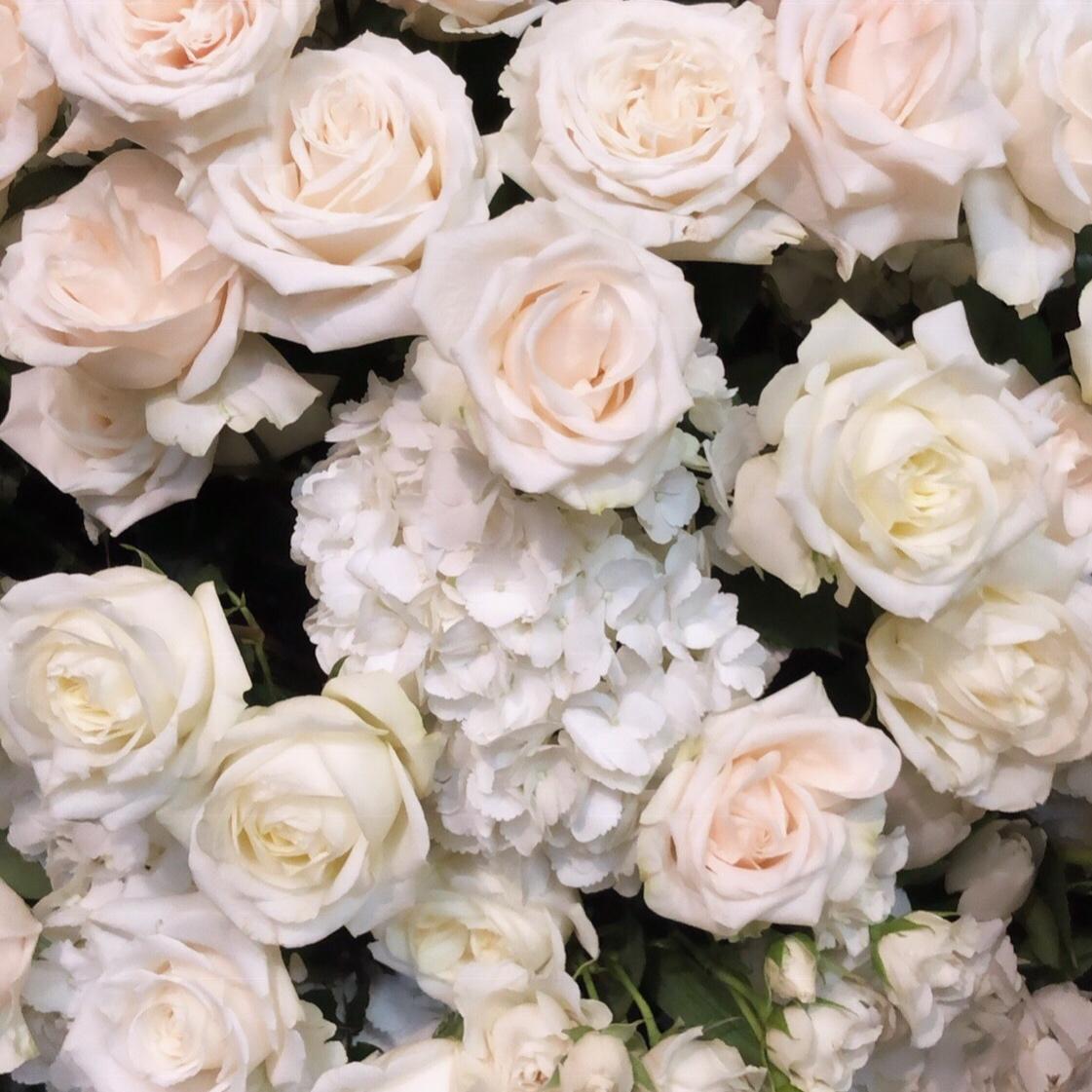 Flowers+.jpg