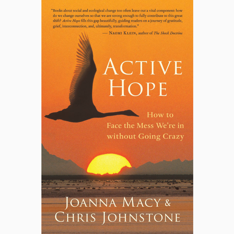 Active-Hope_Chris-Johnstone.jpg