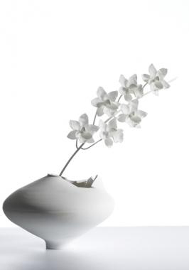 Cymbidium-Ming-Vase-WHT-BG2-266x380.jpg