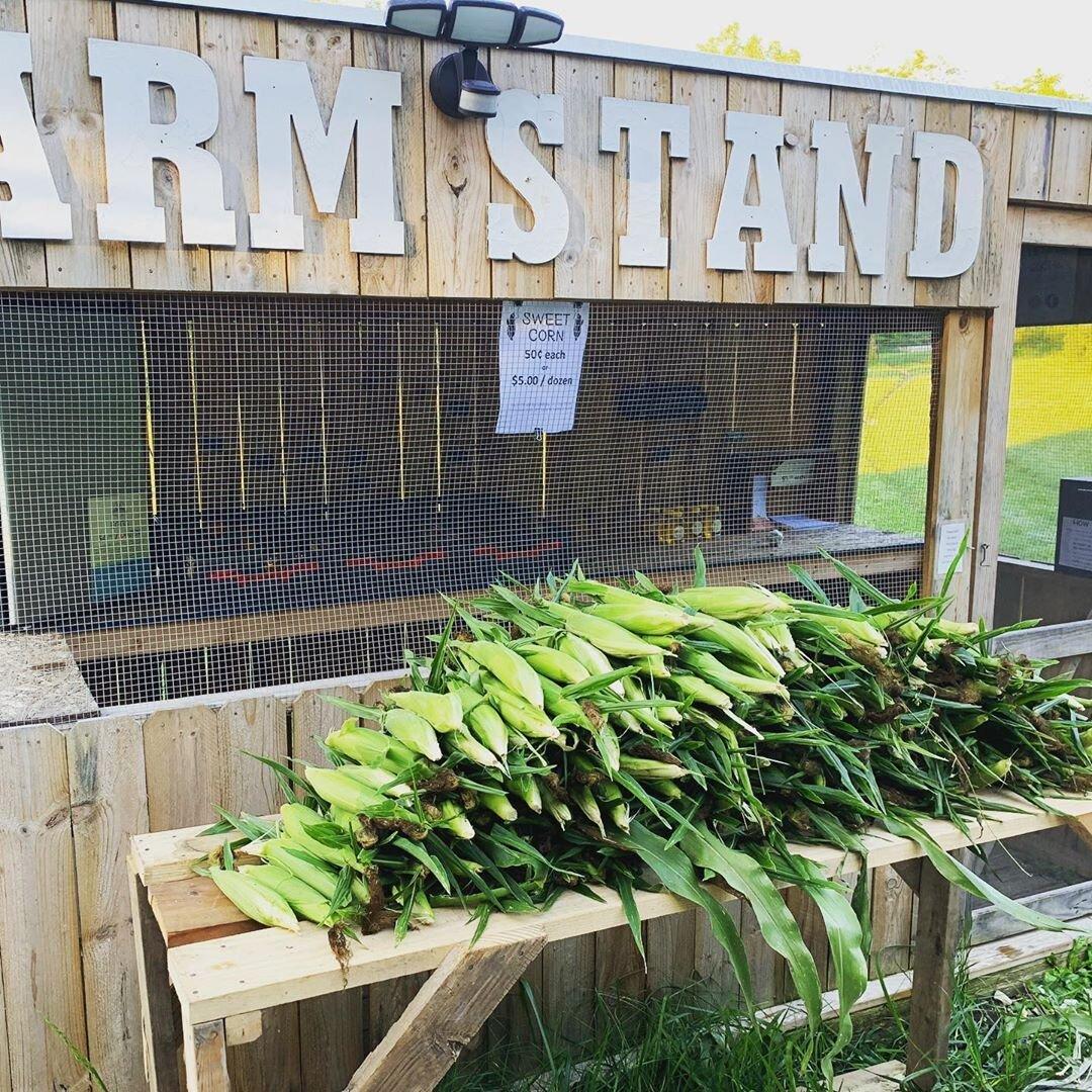Mud Creek Farm A Growing Success Sargent Road Association