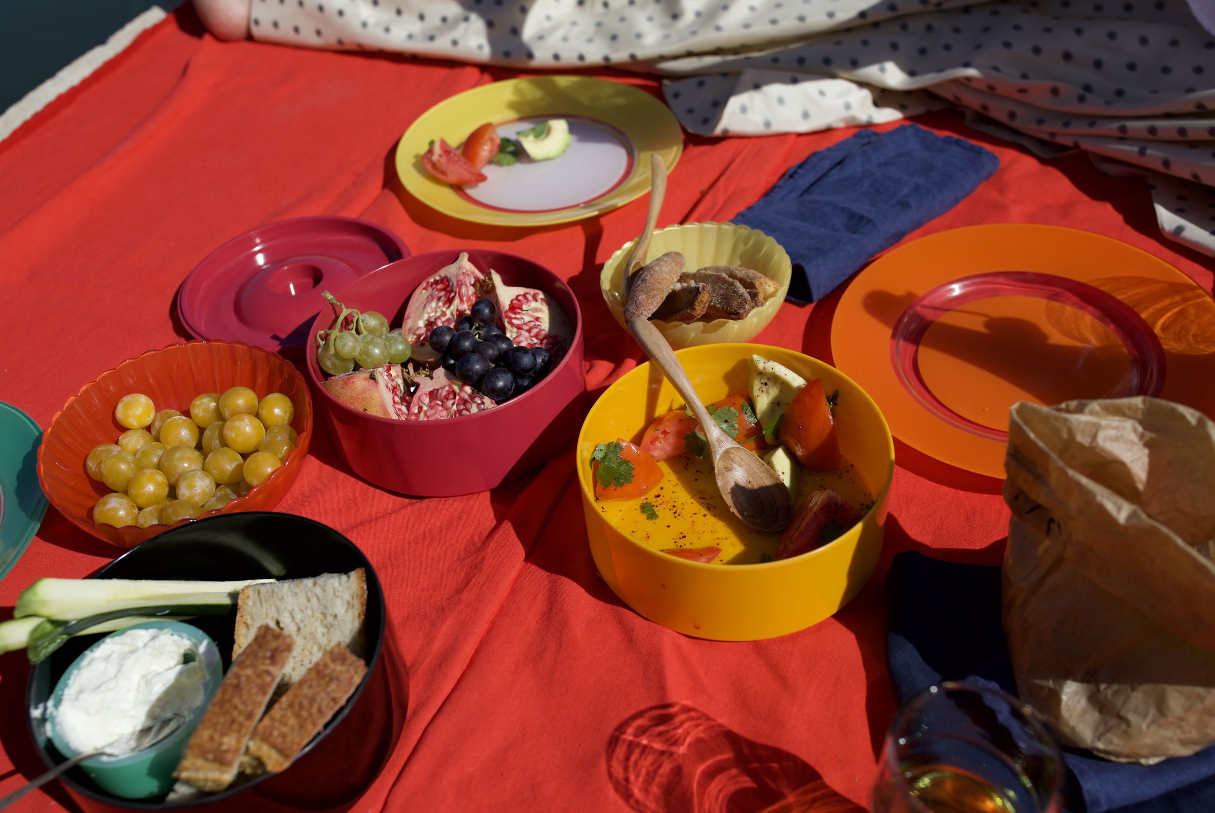 Picnic on the bank of the Rhone River with Pomegranate, Mirabelles, Navette de Marseilles, and Tomato Salad: 3 fresh tomatoes cubed, 1 bunch fresh cilantro, olive oil, salt and pepper to taste.