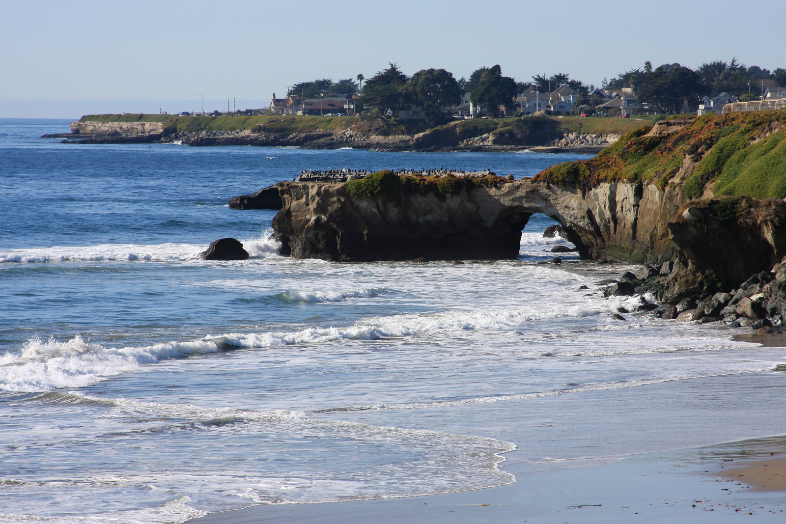 Natural Bridges Beach Santa Cruz iStock-144969168-X3.jpg