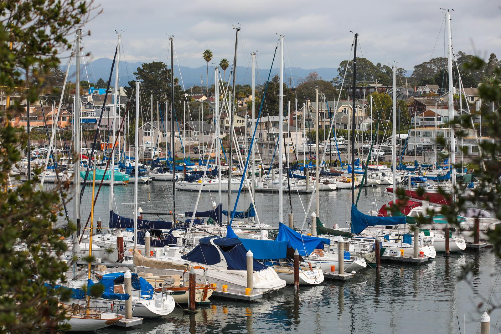 Seabright Santa Cruz Blu Skye Media-9651-X3.jpg