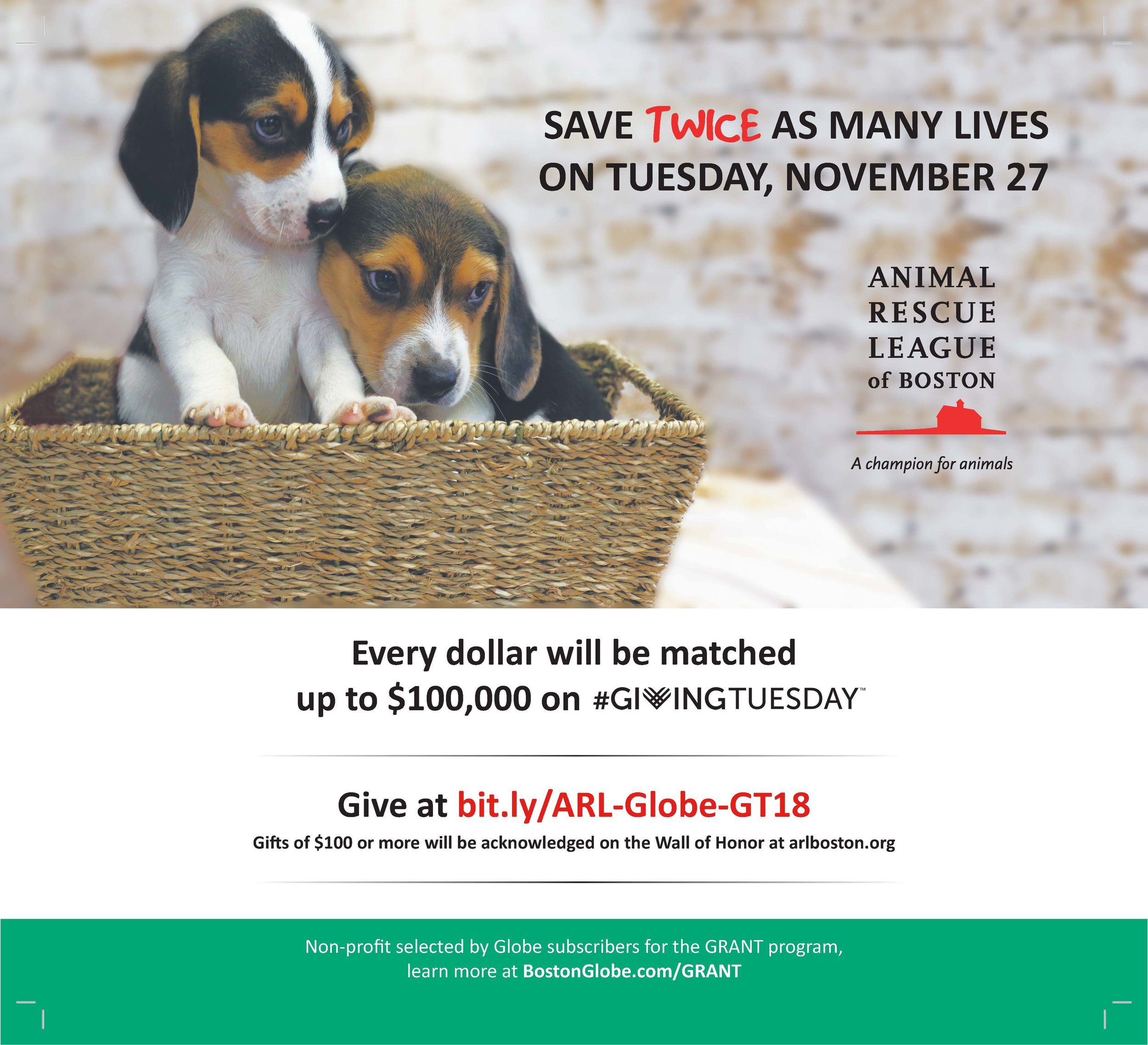 ARL-GivingTuesday2018_BostonGlobeAd_Marks.jpg