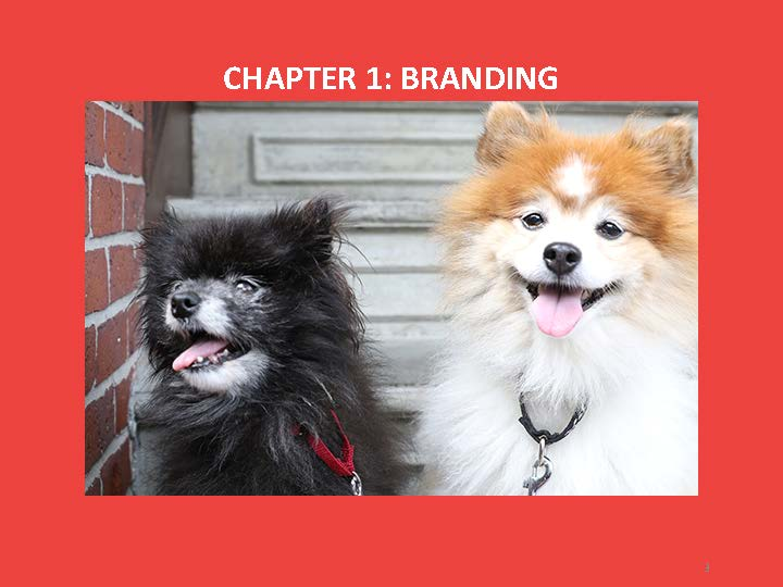 Branding and Messaging Manual (1)_Page_03.jpg