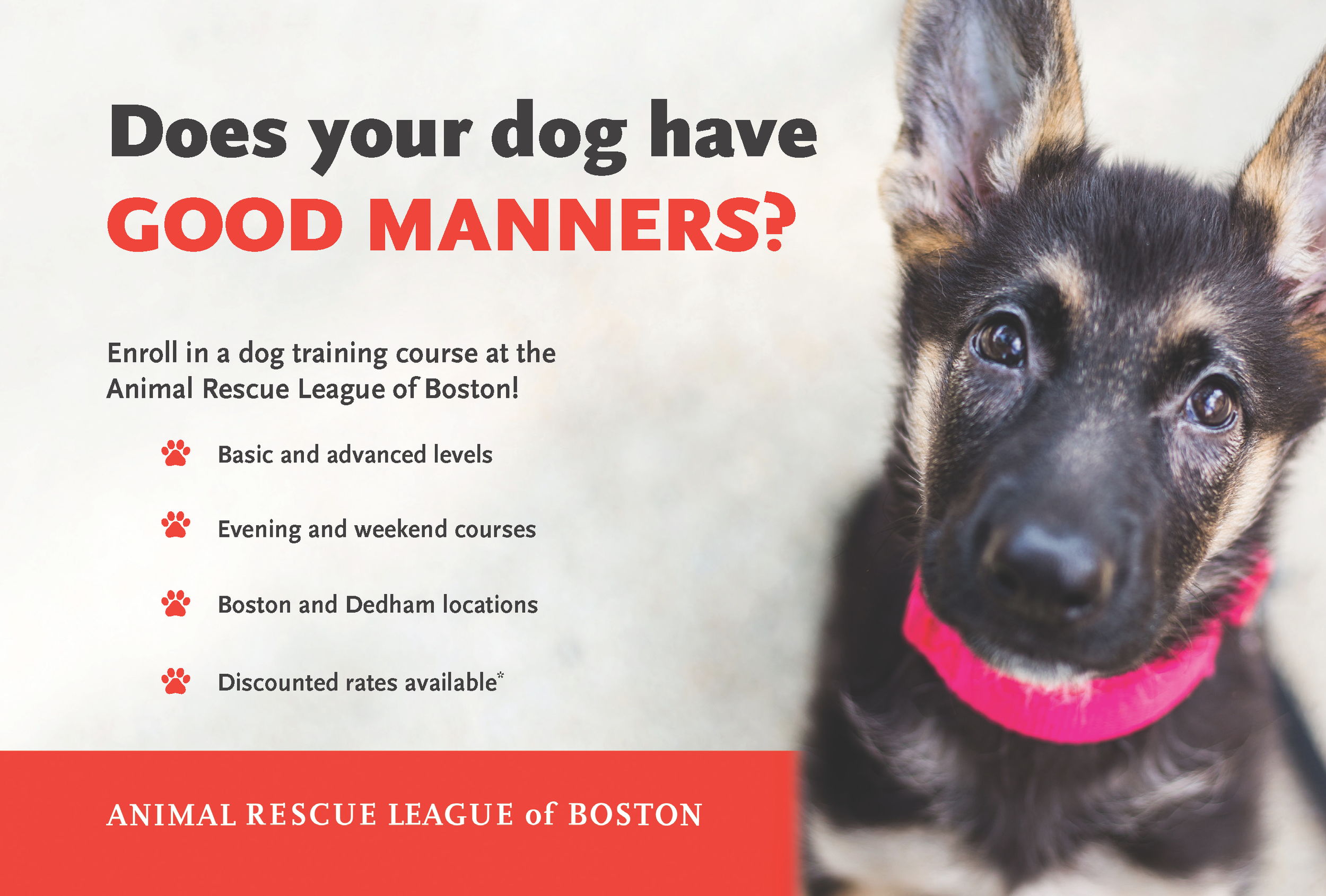 2019_Dog-Training-Post-Card_9x6_Final-FRONT.png