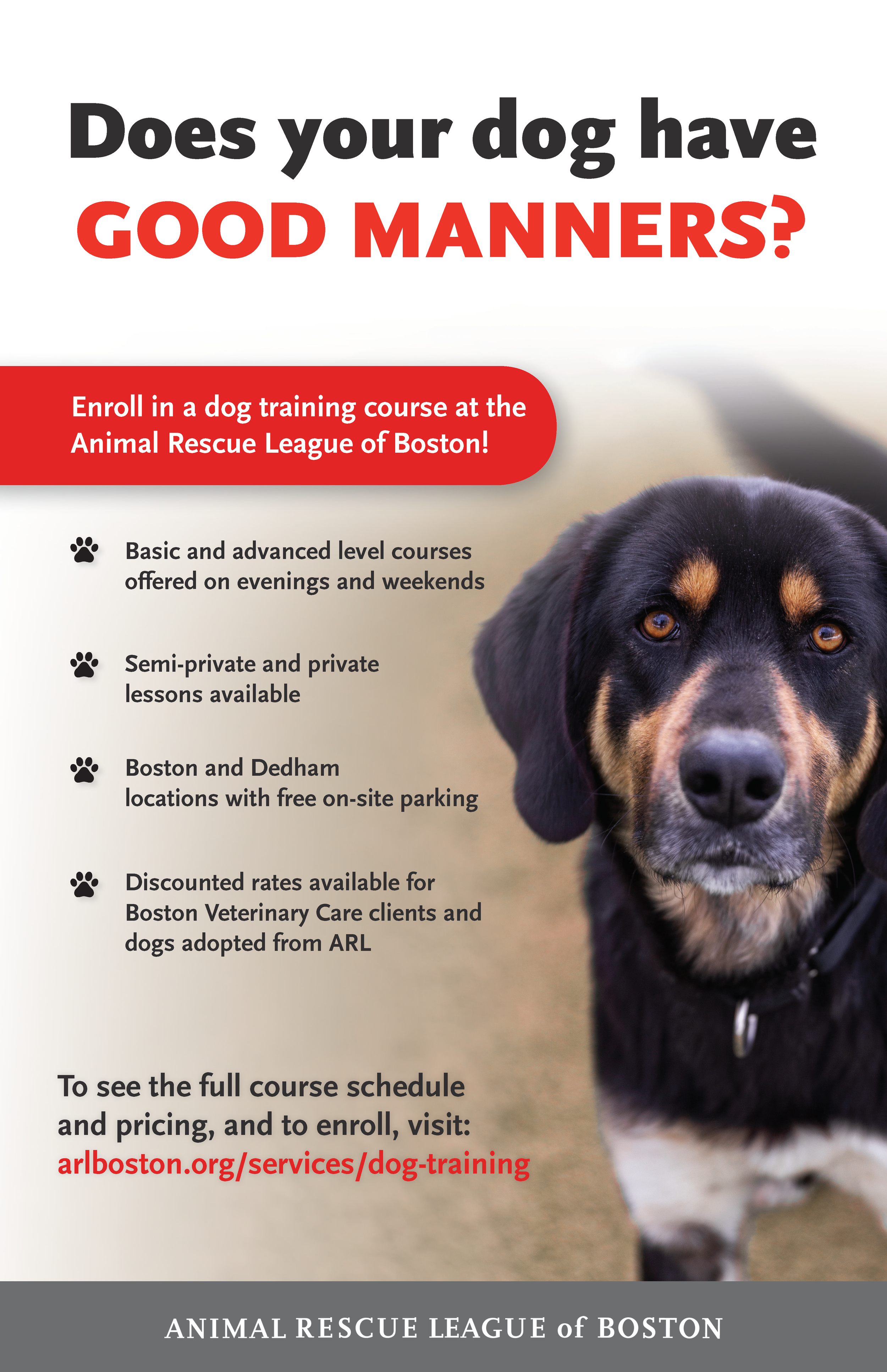 2019_Dog-Training-Poster_11x17_Final.png