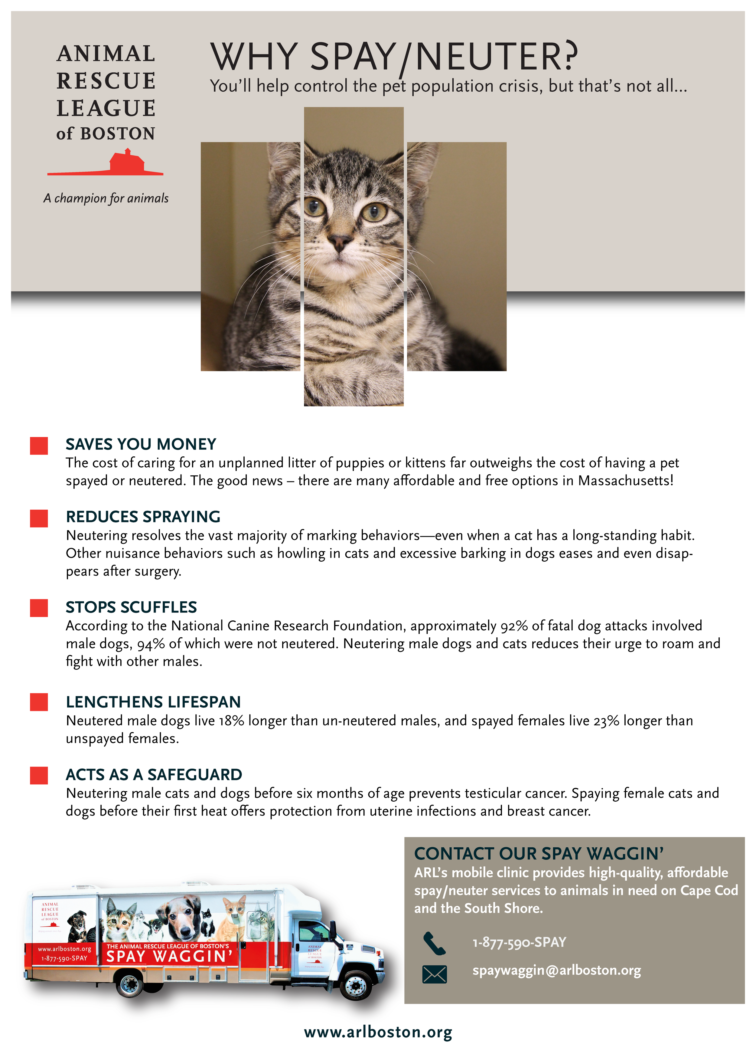 Why Spay Neuter (2).png