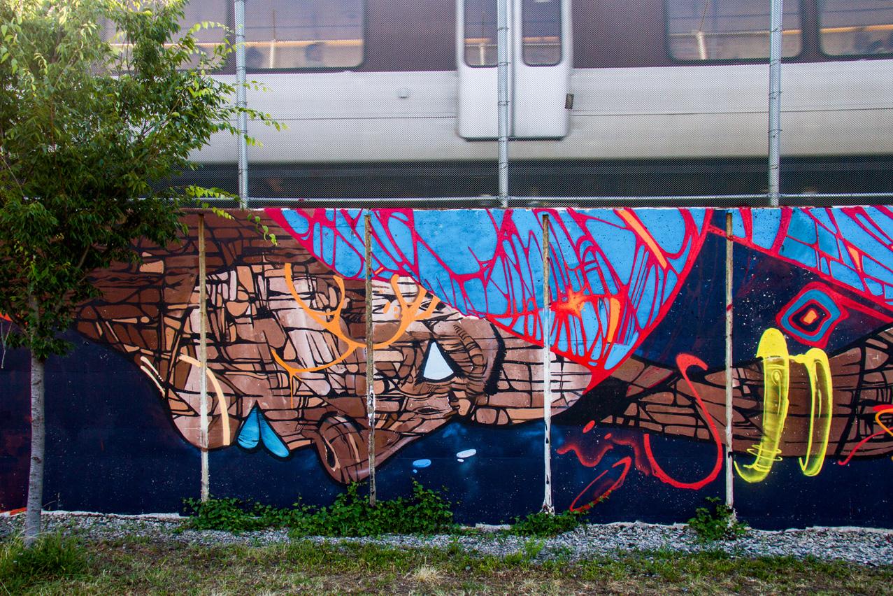 HKS181(Washington, DC)