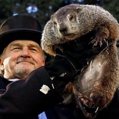 Groundhog Day 2019: Punxsutawney Phil did not see his shadow. That means a early spring. Keep a eye out for spiders, ants and fleas along with all the other insects. They will be coming out early.